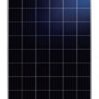 Talesun 275 Watt Poly PV Panel