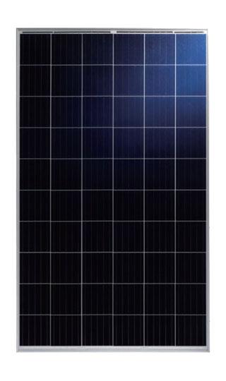 Talesun 275 Watt Poly PV Panel